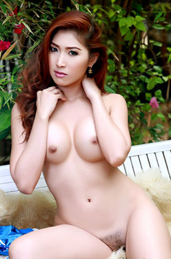 Asian Dream Babe